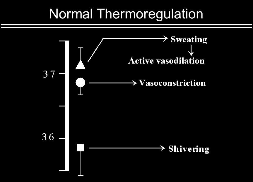 Anesthesia Impairs Thermoregulation