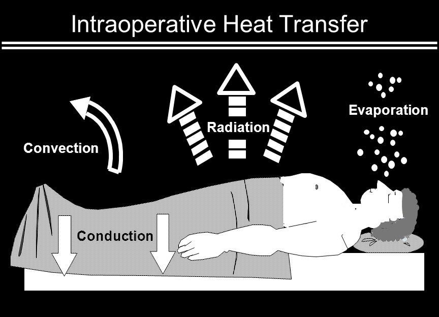 Hypothermia During Anesthesia