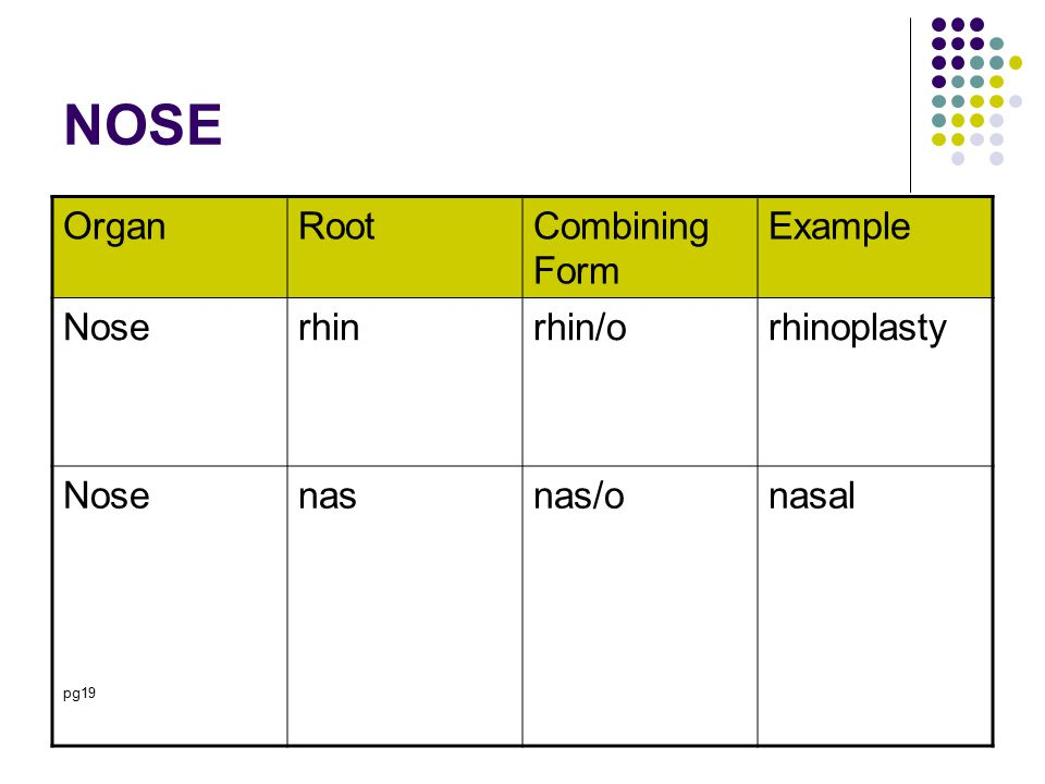 NOSE OrganRootCombining Form Example Noserhinrhin/orhinoplasty Nose pg19 nasnas/onasal