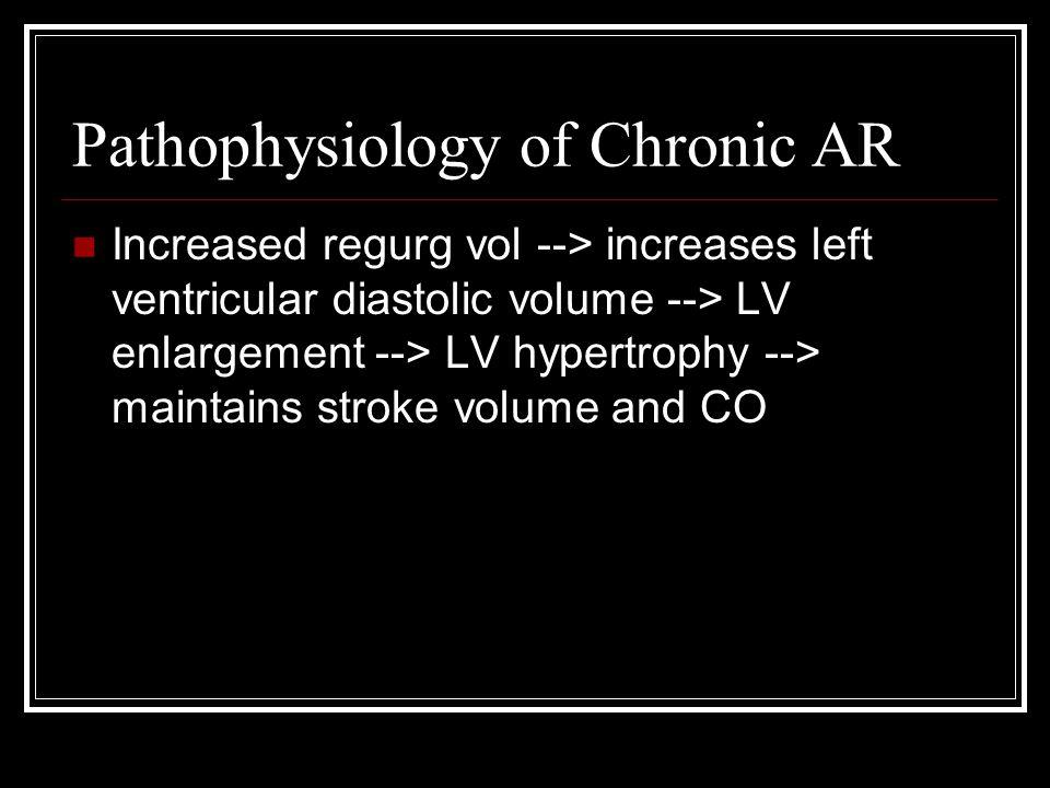 Pathophysiology of Chronic AR Increased regurg vol --> increases left ventricular diastolic volume --> LV enlargement --> LV hypertrophy --> maintains stroke volume and CO