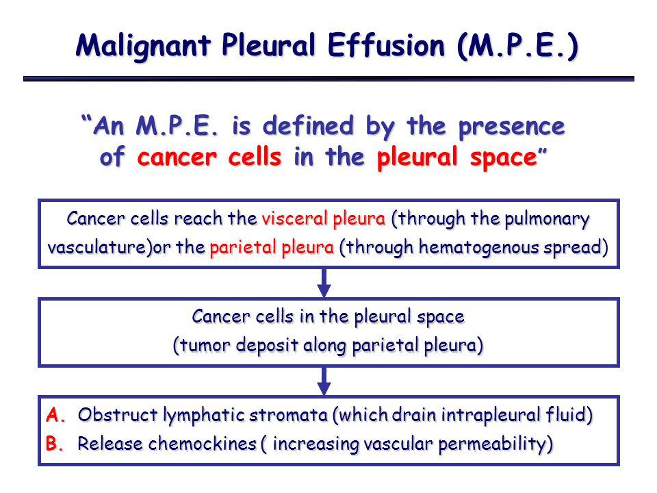 Malignant Pleural Effusion (M.P.E.) ≠ ≠≠ ≠ Paramalignant Effusion Paramalignant Effusion 1.