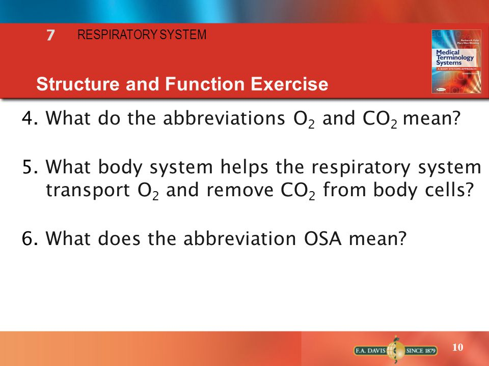 10 7 RESPIRATORY SYSTEM Structure and Function Exercise 4.What do the abbreviations O 2 and CO 2 mean? 5.What body system helps the respiratory system