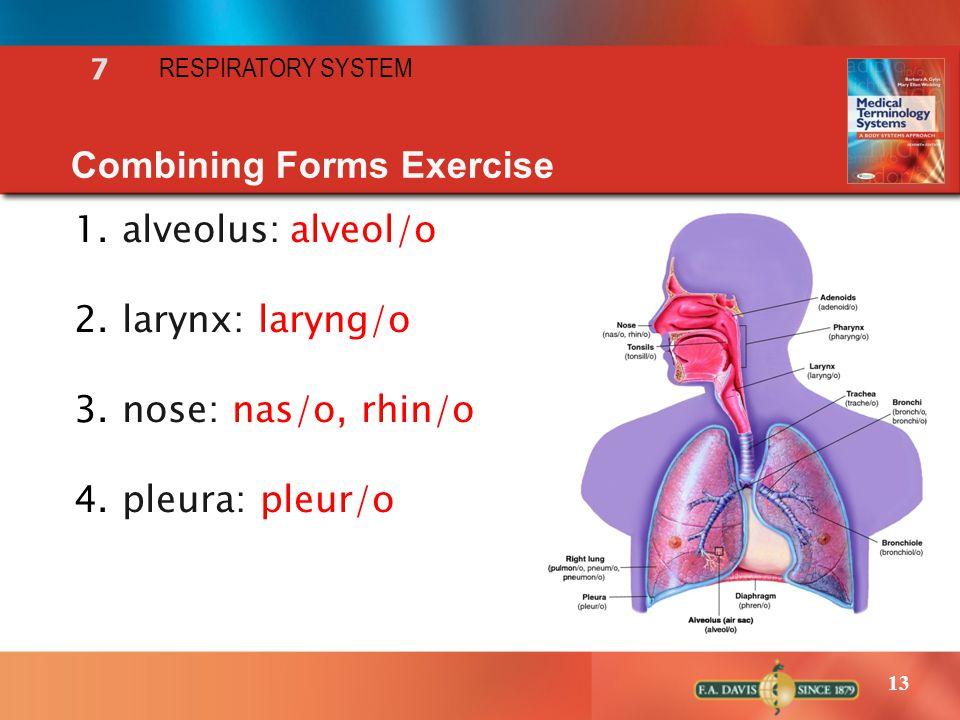 13 Combining Forms Exercise 1.alveolus:alveol/o 2.larynx: laryng/o 3.nose: nas/o, rhin/o 4.pleura: pleur/o RESPIRATORY SYSTEM 7