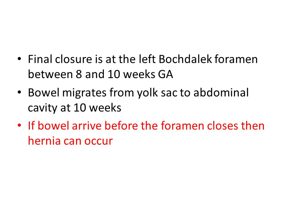 Final closure is at the left Bochdalek foramen between 8 and 10 weeks GA Bowel migrates from yolk sac to abdominal cavity at 10 weeks If bowel arrive before the foramen closes then hernia can occur
