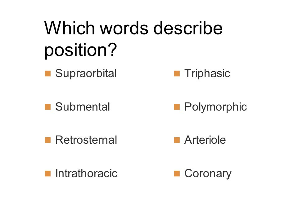 Which words describe position.