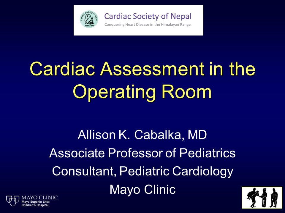 Cardiac Assessment in the Operating Room Allison K.
