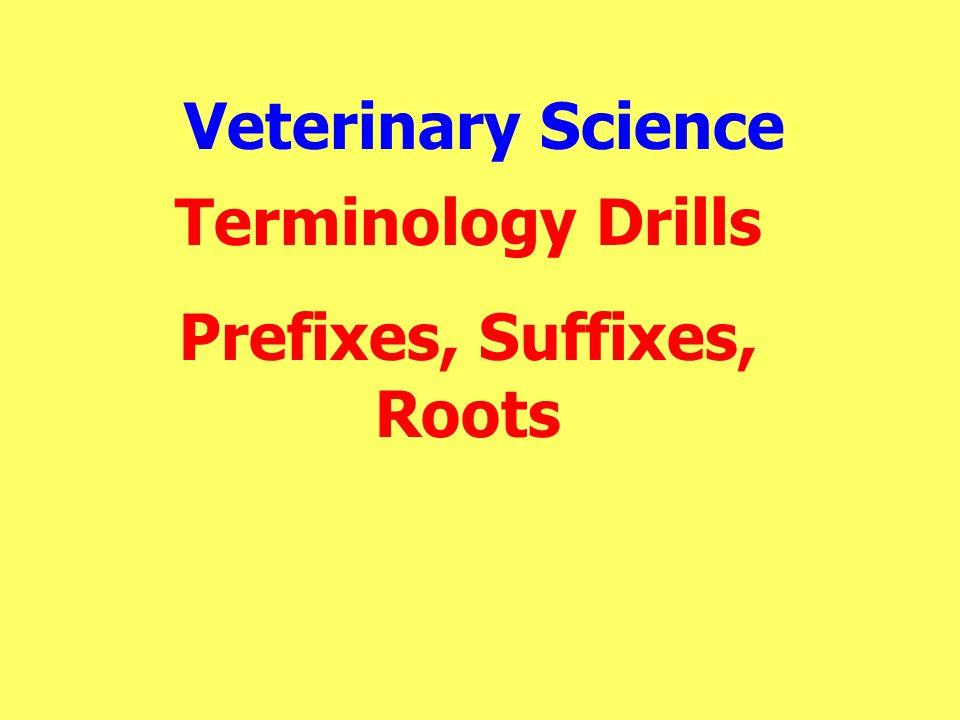 Veterinary Science Terminology Drills Prefixes, Suffixes, Roots