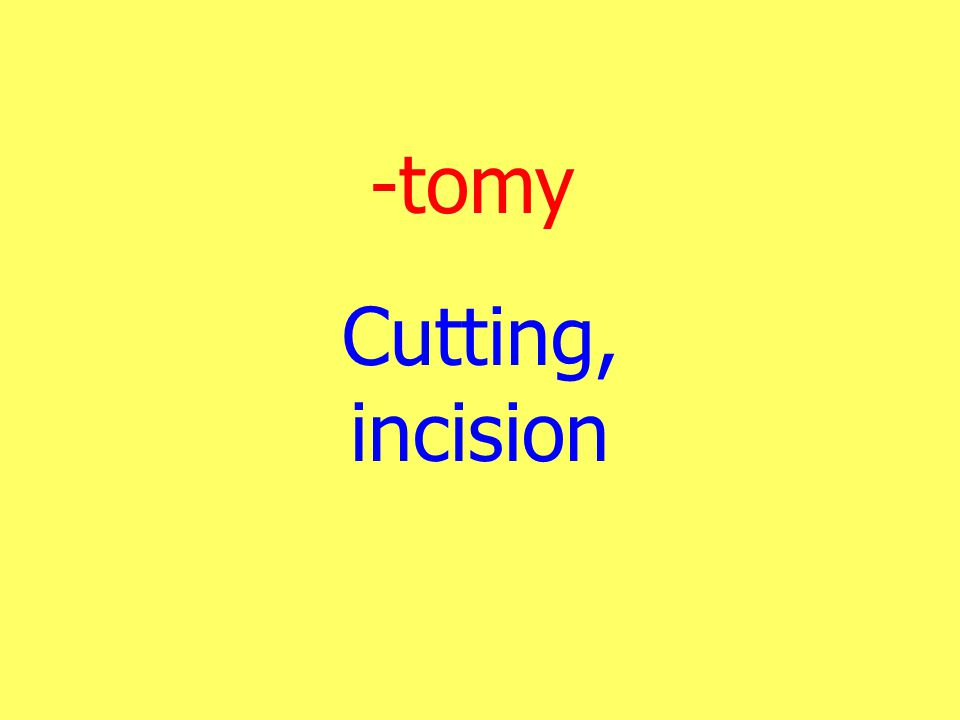 -tomy Cutting, incision