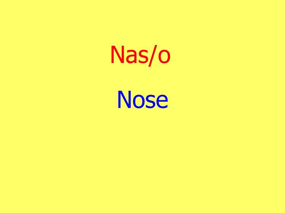 Nas/o Nose