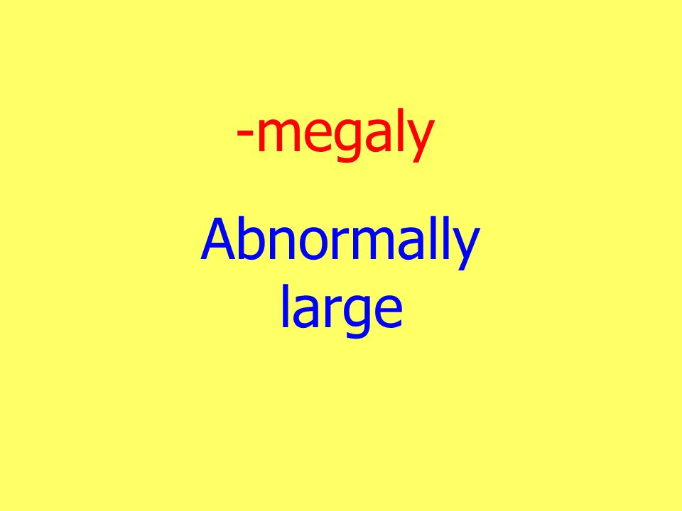 -megaly Abnormally large