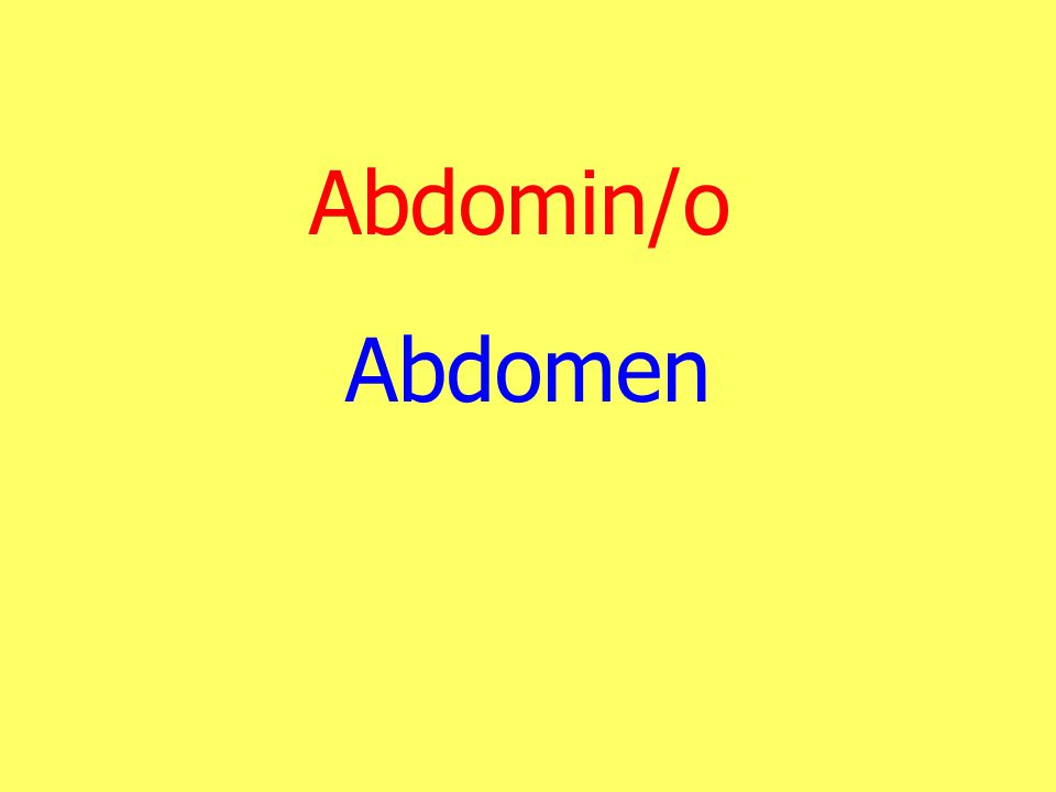 Abdomin/o Abdomen