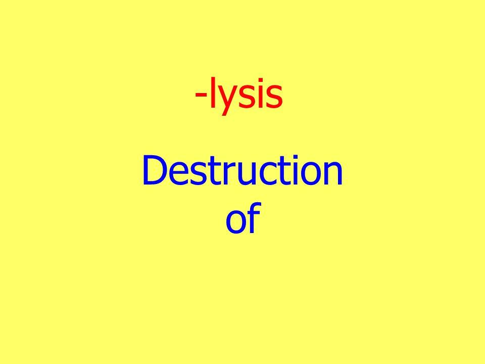 -lysis Destruction of