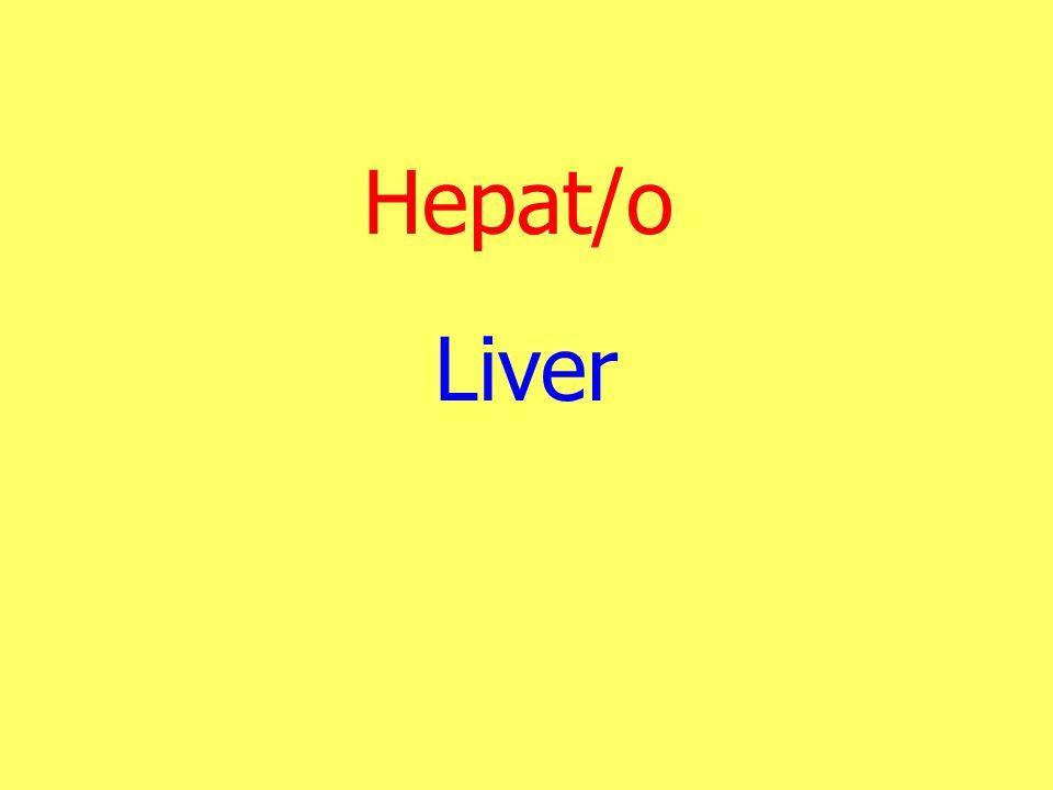 Hepat/o Liver