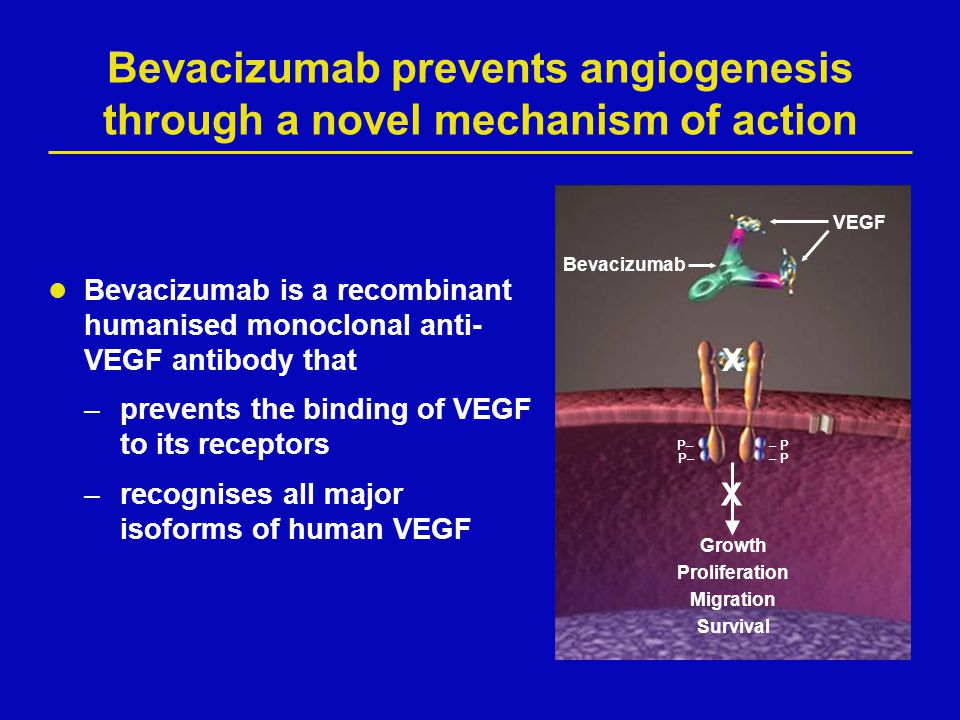 Mechanism of action of bevacizumab EARLY EFFECTSCONTINUED EFFECTS Normalisation of remaining tumour vasculature 5–8 1 2 Regression of existing tumour microvasculature 1–7 Inhibition of new tumour vasculature 1,2,9,10 3 1 Baluk P, et al.