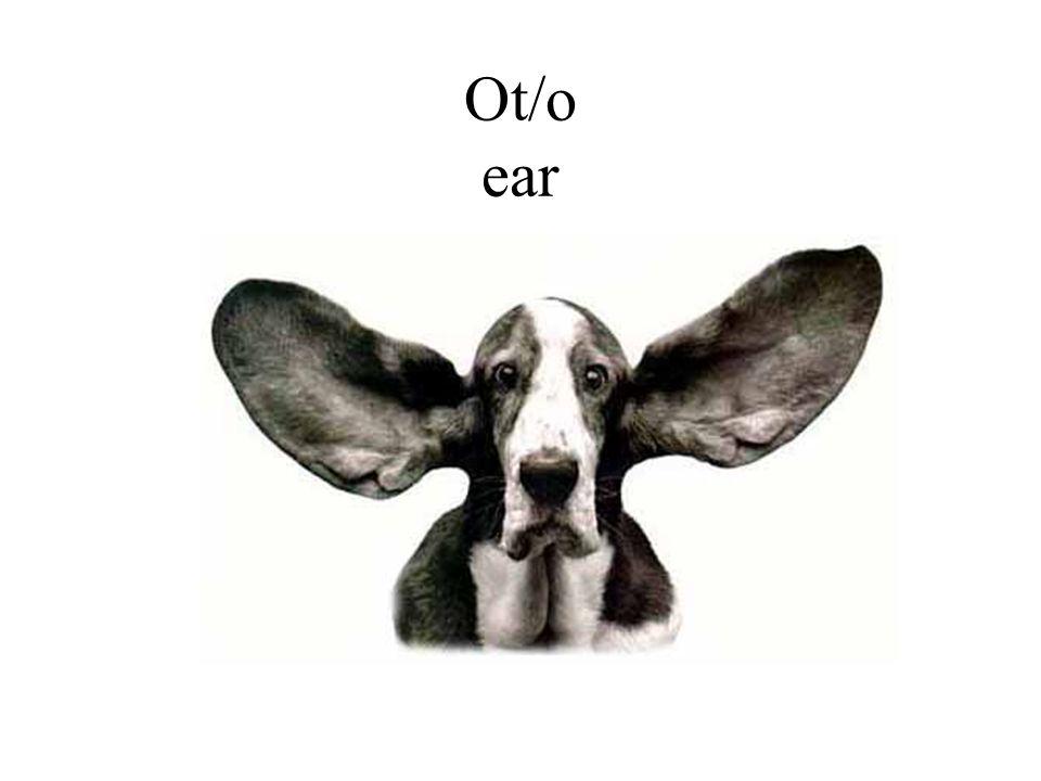 Ot/o ear