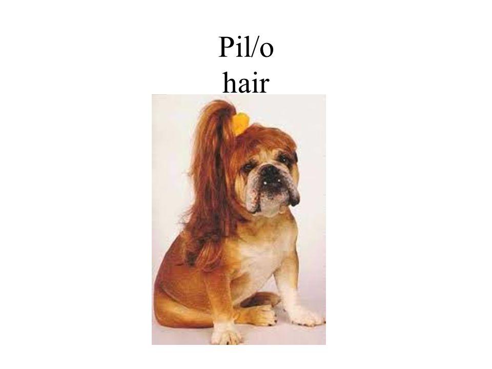 Pil/o hair
