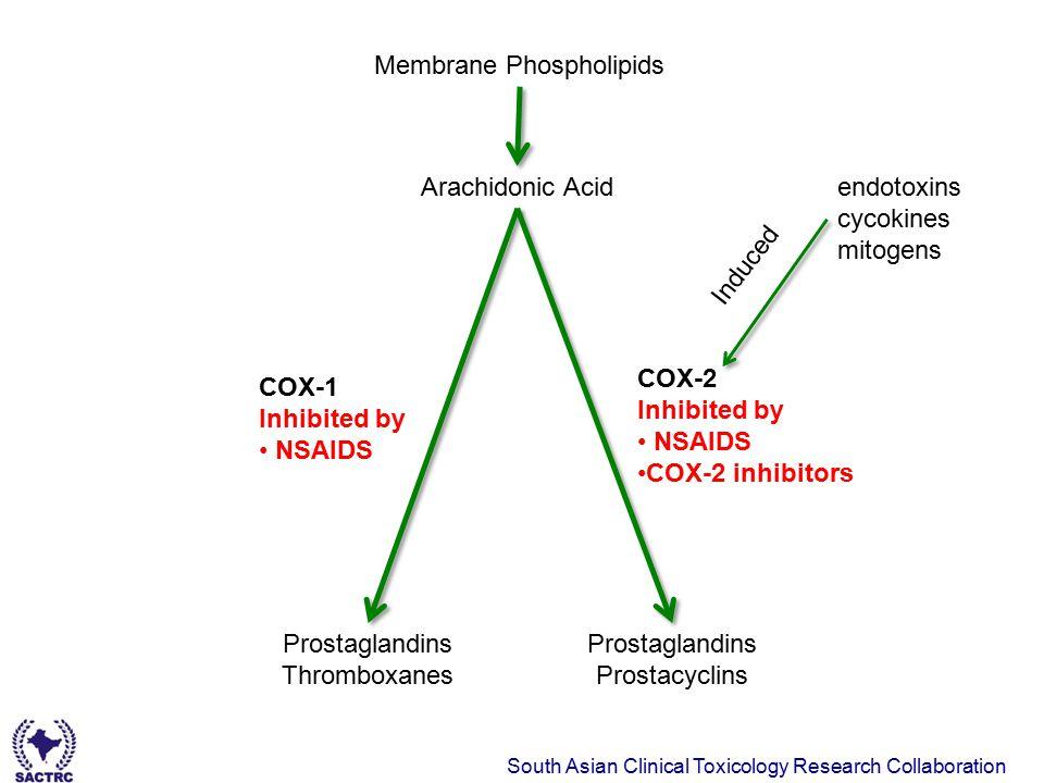 South Asian Clinical Toxicology Research Collaboration Membrane Phospholipids Arachidonic Acid Prostaglandins Thromboxanes Prostaglandins Prostacyclin