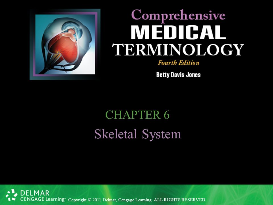 Copyright © 2011 Delmar, Cengage Learning. ALL RIGHTS RESERVED. CHAPTER 6 Skeletal System