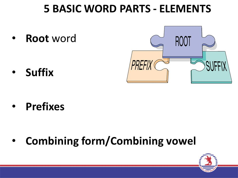Now, lets begin……. Basic Principles/Elements of Medical Word Building
