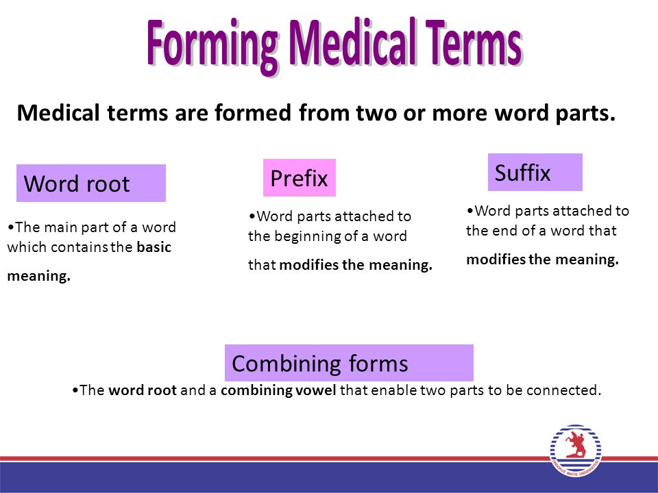 9 Forming Medical Terms Part 2 Medical terms are formed from two or more word parts.