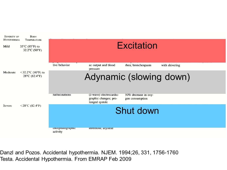 Excitation Adynamic (slowing down) Shut down Danzl and Pozos.