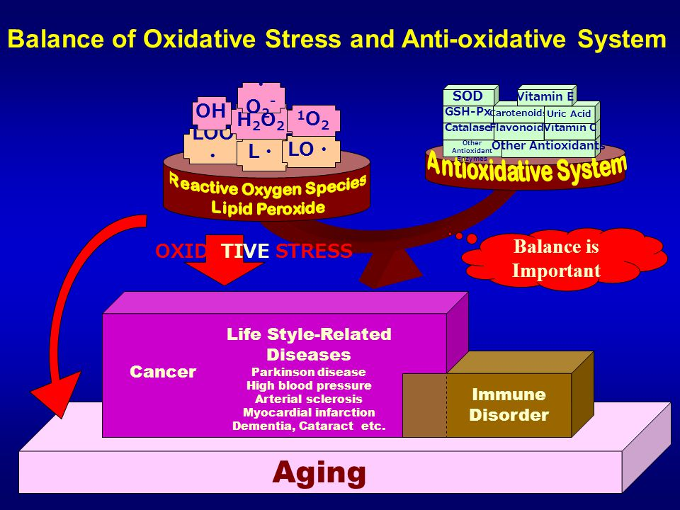 Aging Balance is Important Immune Disorder LOO ・ L・L・ LO ・ H2O2H2O2 1O21O2 ・O2-・O2- OH Other Antioxidant Enzymes Other Antioxidants Catalase Flavonoids Vitamin C GSH-Px Carotenoids Uric Acid SOD Vitamin E Life Style-Related Diseases Parkinson disease High blood pressure Arterial sclerosis Myocardial infarction Dementia, Cataract etc.