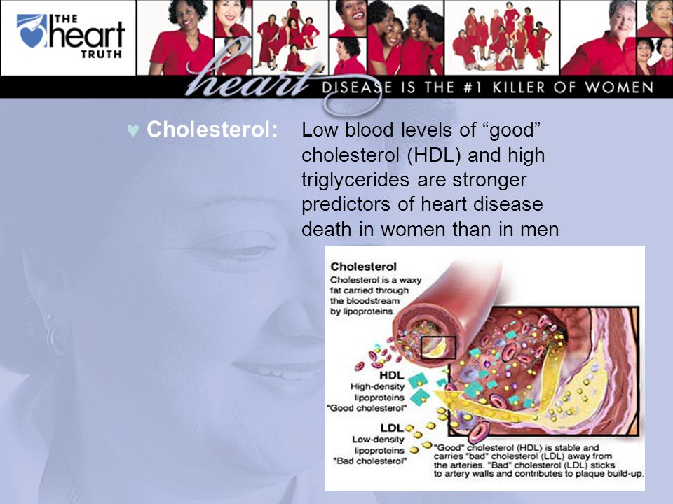Cholesterol: Low blood levels of good cholesterol (HDL) and high triglycerides are stronger predictors of heart disease death in women than in men