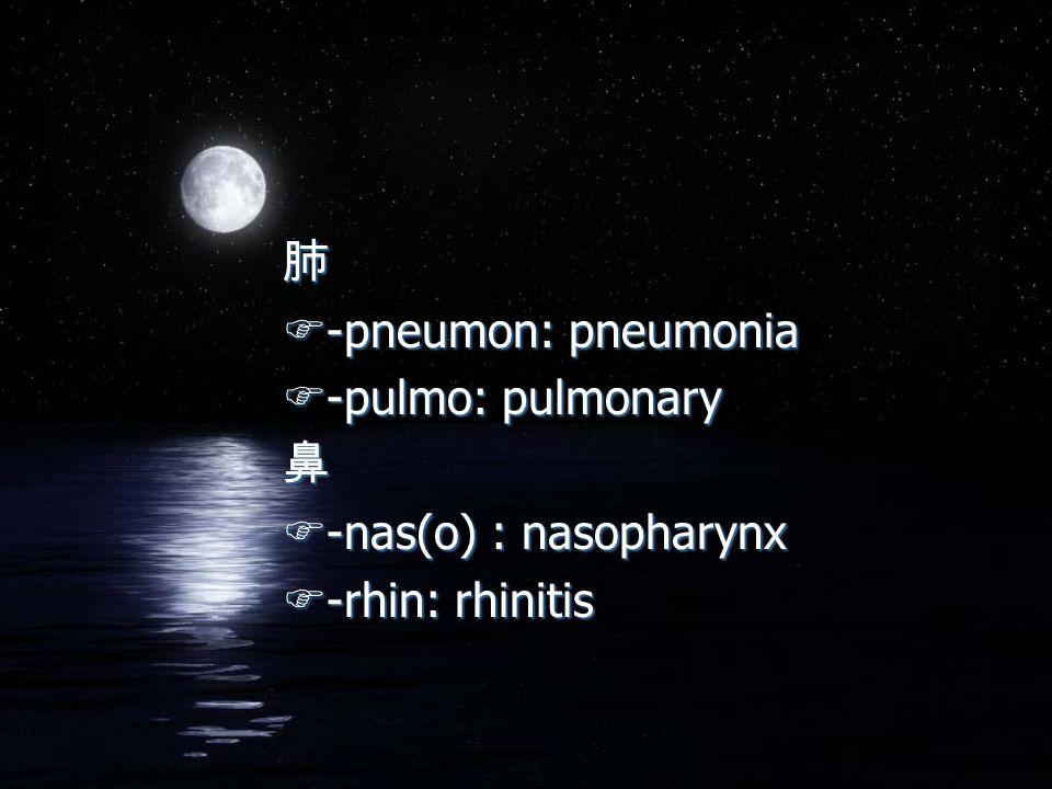 肺 F-pneumon: pneumonia F-pulmo: pulmonary 鼻 F-nas(o) : nasopharynx F-rhin: rhinitis 肺 F-pneumon: pneumonia F-pulmo: pulmonary 鼻 F-nas(o) : nasopharynx F-rhin: rhinitis