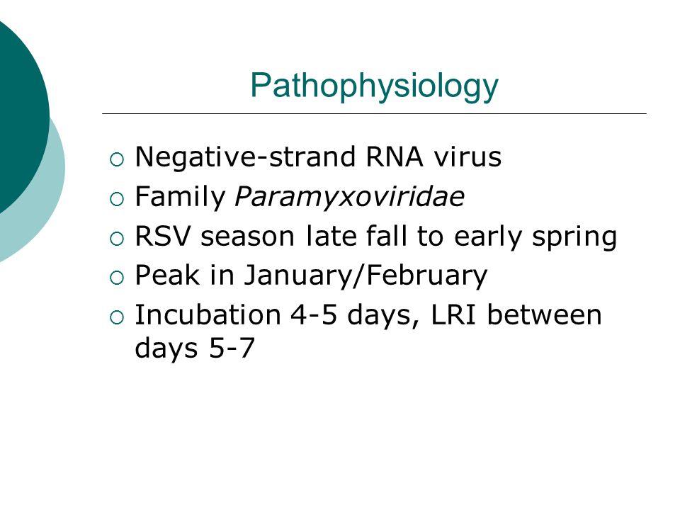 Pathophysiology  Negative-strand RNA virus  Family Paramyxoviridae  RSV season late fall to early spring  Peak in January/February  Incubation 4-