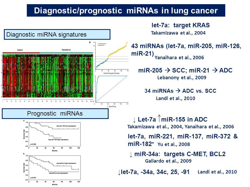 Diagnostic/prognostic miRNAs in lung cancer Diagnostic miRNA signatures let-7a: target KRAS Takamizawa et al., 2004 43 miRNAs (let-7a, miR-205, miR-12
