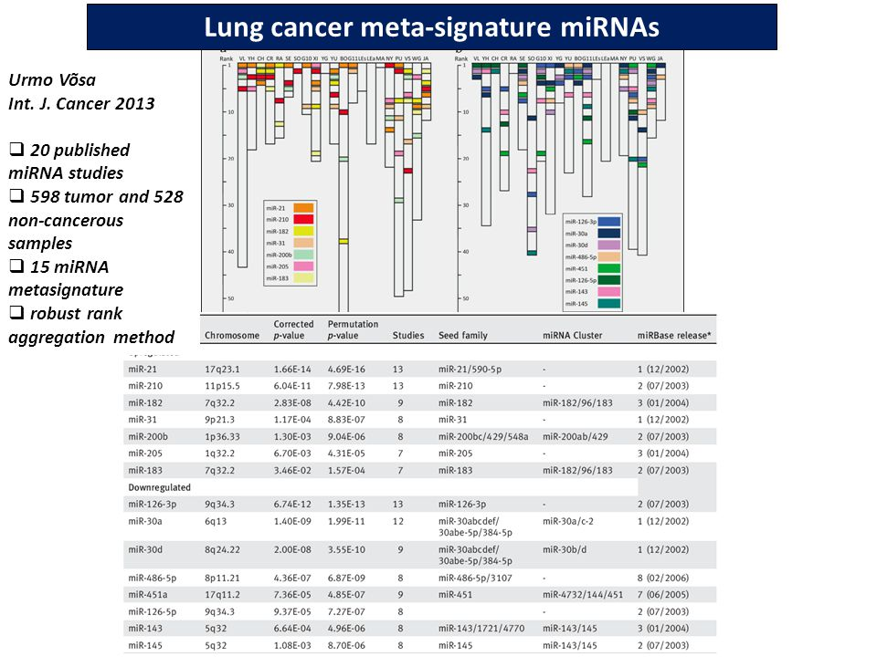 Lung cancer meta-signature miRNAs Urmo Vo˜sa Int. J.