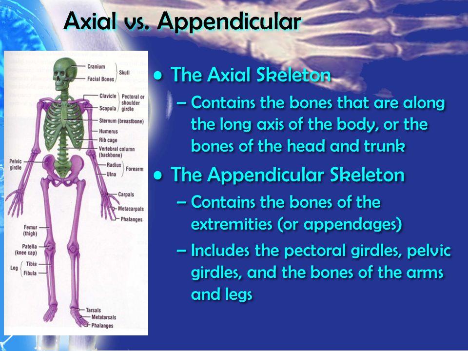 Axial vs.