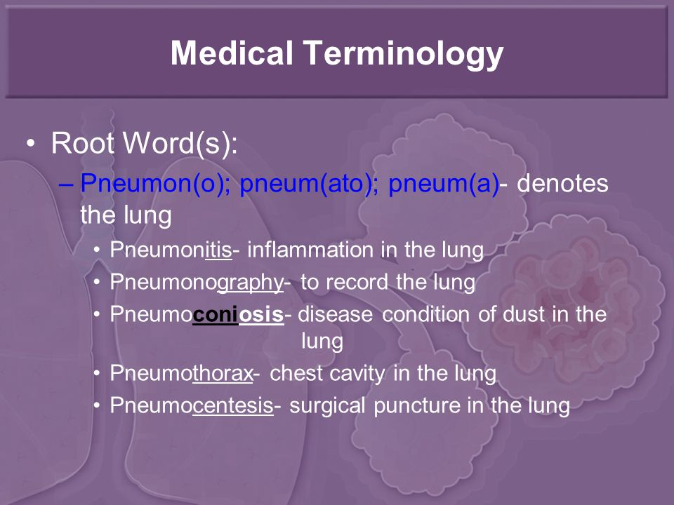 Medical Terminology Root Word(s): –Pneumon(o); pneum(ato); pneum(a)- denotes the lung Pneumonitis- inflammation in the lung Pneumonography- to record