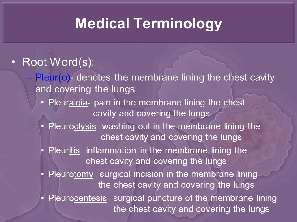 Medical Terminology Root Word(s): –Pleur(o)- denotes the membrane lining the chest cavity and covering the lungs Pleuralgia- pain in the membrane lining the chest cavity and covering the lungs Pleuroclysis- washing out in the membrane lining the chest cavity and covering the lungs Pleuritis- inflammation in the membrane lining the chest cavity and covering the lungs Pleurotomy- surgical incision in the membrane lining the chest cavity and covering the lungs Pleurocentesis- surgical puncture of the membrane lining the chest cavity and covering the lungs