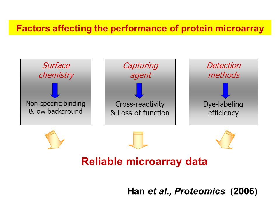 Factors affecting the performance of protein microarray Surface chemistry Non-specific binding & low background Detection methods Dye-labeling efficiency Capturing agent Cross-reactivity & Loss-of-function Reliable microarray data Han et al., Proteomics (2006)