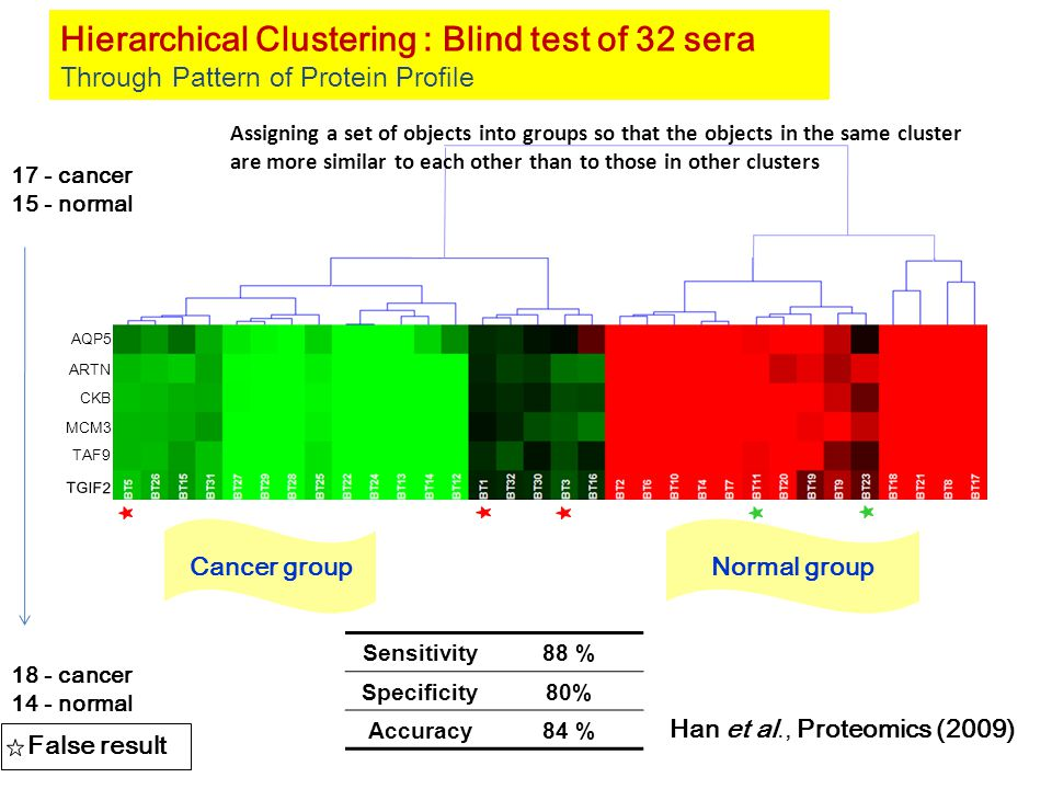 AQP5 CKB ARTN MCM3 TAF9 TGIF2 Hierarchical Clustering : Blind test of 32 sera Through Pattern of Protein Profile Cancer groupNormal group False result Sensitivity88 % Specificity80% Accuracy84 % 17 - cancer 15 - normal 18 - cancer 14 - normal Han et al., Proteomics (2009) Assigning a set of objects into groups so that the objects in the same cluster are more similar to each other than to those in other clusters