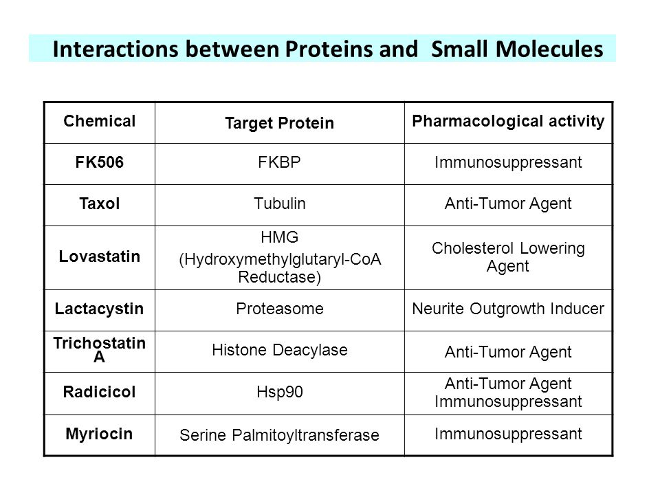Interactions between Proteins and Small Molecules Chemical Target Protein Pharmacological activity FK506FKBPImmunosuppressant TaxolTubulinAnti-Tumor A