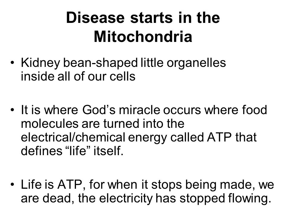Disease starts in the Mitochondria Kidney bean-shaped little organelles inside all of our cells It is where God's miracle occurs where food molecules