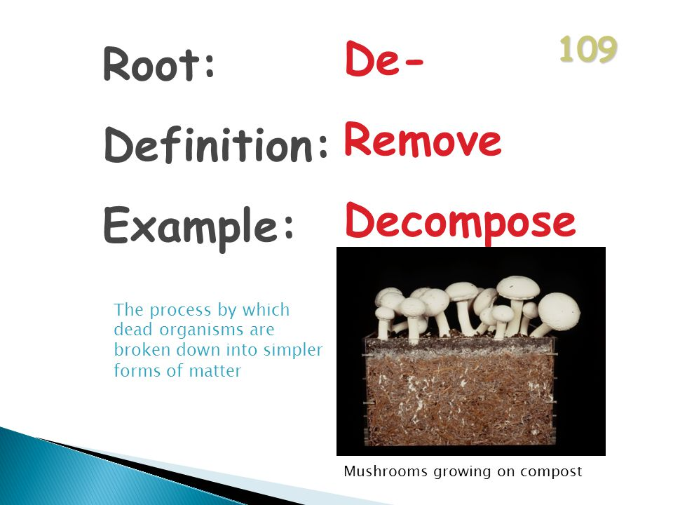 109 Root: Definition: Example: De- Remove Decompose The process by which dead organisms are broken down into simpler forms of matter Mushrooms growing on compost