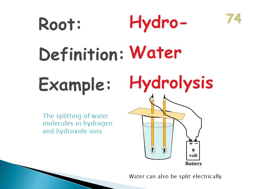 74 Root: Definition: Example: Hydro- Water Hydrolysis The splitting of water molecules in hydrogen and hydroxide ions Water can also be split electrically