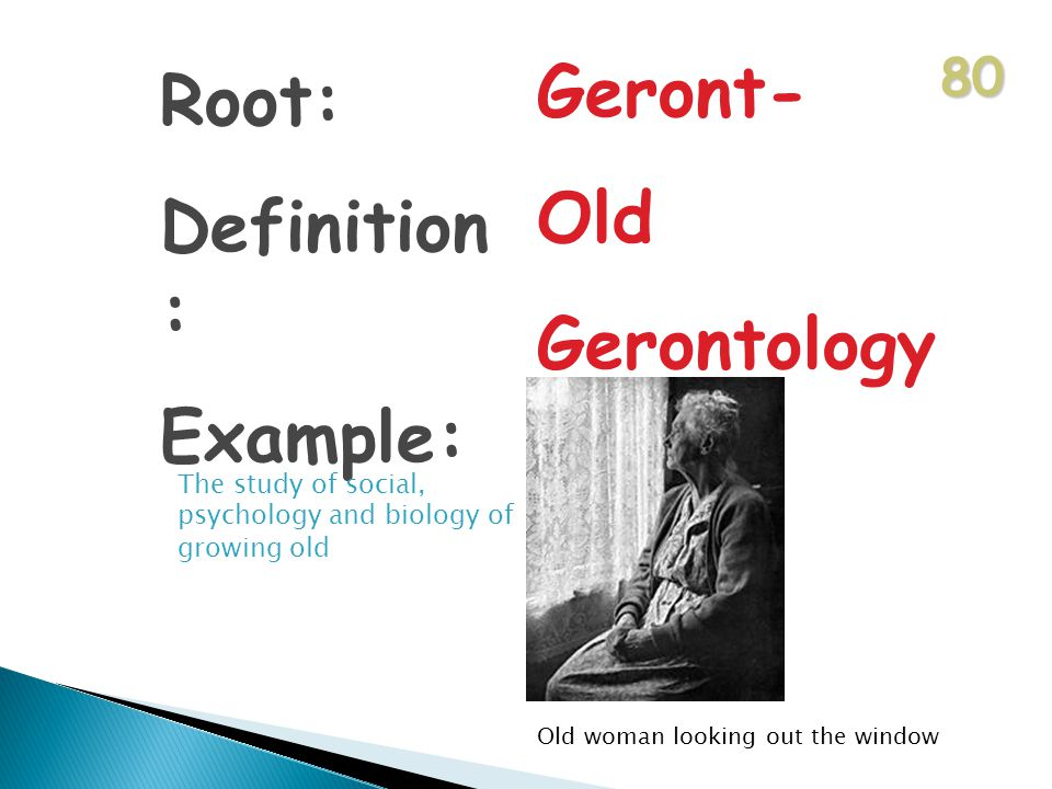 80 Root: Definition : Example: Geront- Old Gerontology The study of social, psychology and biology of growing old Old woman looking out the window