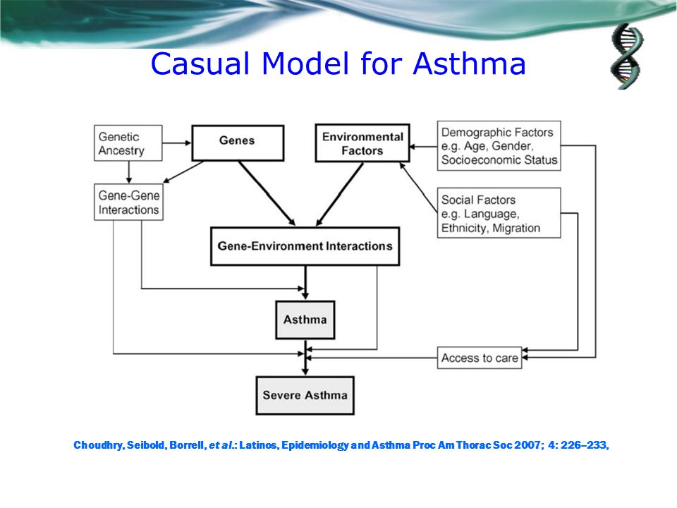 Casual Model for Asthma Choudhry, Seibold, Borrell, et al.: Latinos, Epidemiology and Asthma Proc Am Thorac Soc 2007; 4: 226–233,