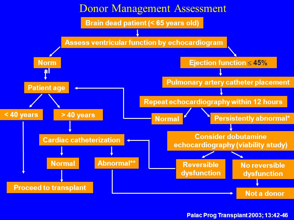 Donor Management Assessment Palac Prog Transplant 2003; 13:42-46 Brain dead patient (< 65 years old) Assess ventricular function by echocardiogram Nor