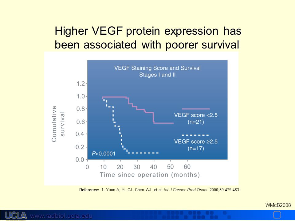www.radbiol.ucla.edu WMcB2008 Higher VEGF protein expression has been associated with poorer survival Reference: 1.