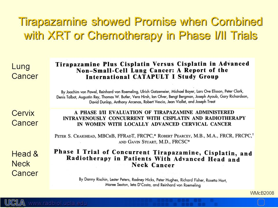 www.radbiol.ucla.edu WMcB2008 Lung Cancer Cervix Cancer Head & Neck Cancer Tirapazamine showed Promise when Combined with XRT or Chemotherapy in Phase I/II Trials
