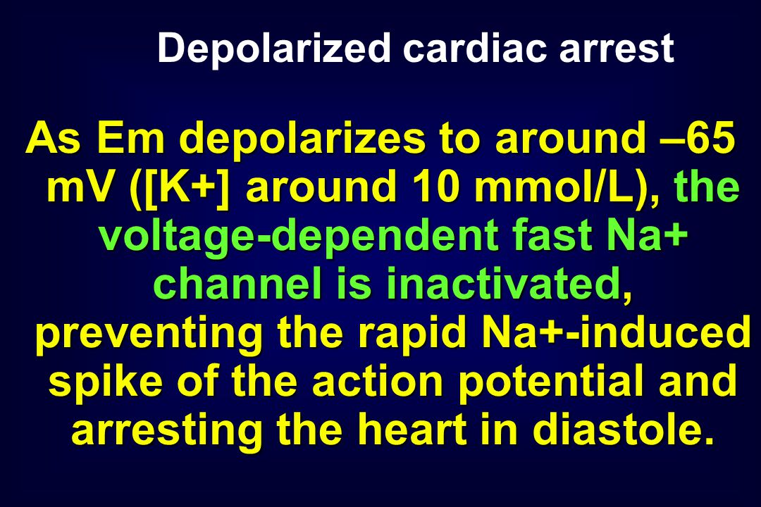 As Em depolarizes to around –65 mV ([K+] around 10 mmol/L), the voltage-dependent fast Na+ channel is inactivated, preventing the rapid Na+-induced spike of the action potential and arresting the heart in diastole.