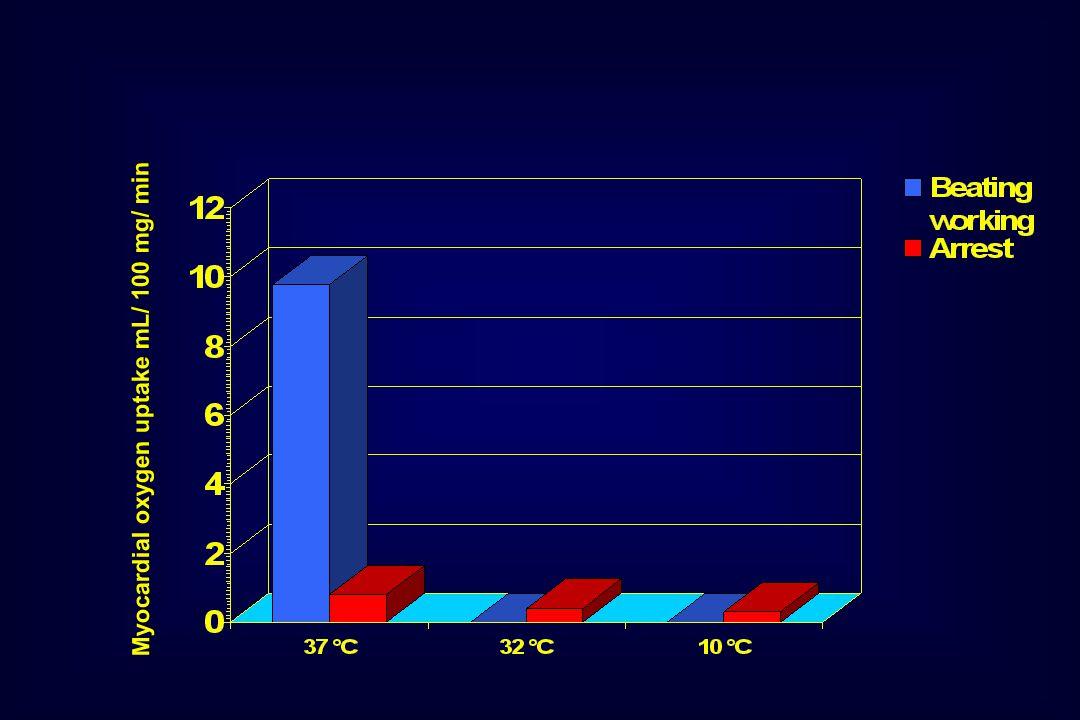 Myocardial oxygen uptake mL/ 100 mg/ min