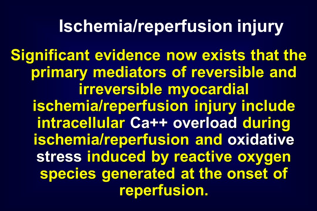 Significant evidence now exists that the primary mediators of reversible and irreversible myocardial ischemia/reperfusion injury include intracellular Ca++ overload during ischemia/reperfusion and oxidative stress induced by reactive oxygen species generated at the onset of reperfusion.