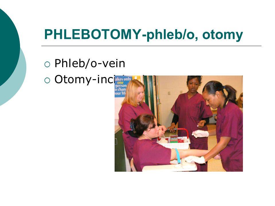 PHLEBOTOMY-phleb/o, otomy  Phleb/o-vein  Otomy-incision into