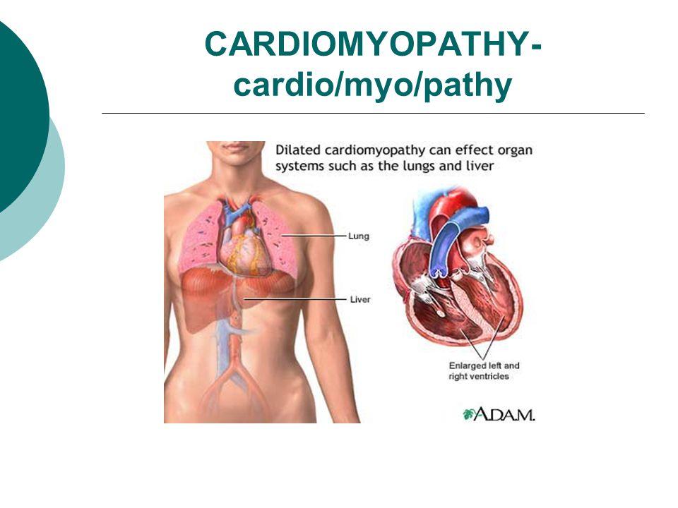 CARDIOMYOPATHY- cardio/myo/pathy
